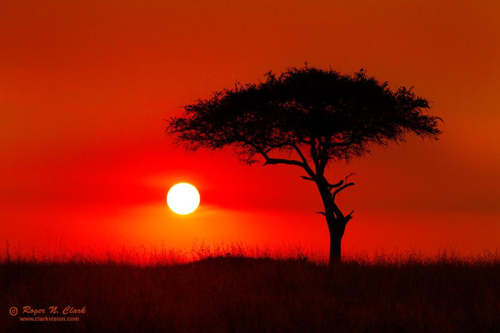 Northern Serengeti Sunset Sunset